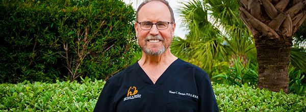 Katy Dentist - Thomas Harrison, DDS
